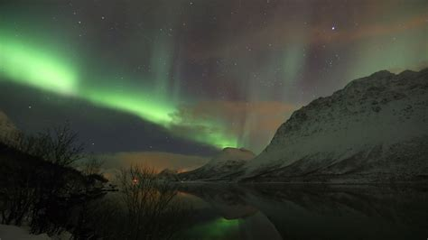 tromso norway northern lights tour whale watching northern lights in tromsø 4 days 3