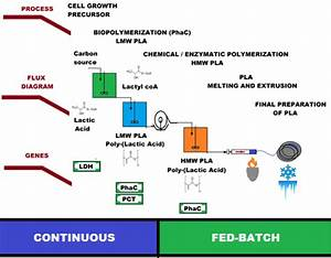 Igem Report  Integrated Synbio Tools Applied For Optimized Bioproduction Of Poly