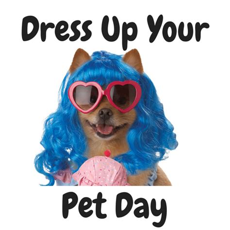 Blog For Fancy Dress Costumesdress Up Your Pet Day!  Blog. Tools Organizer Garage. Decorative Strap Hinges For Garage Doors. Glass Door Lock. Shades For Doors. Commercial Garage Door Repair. Roman Shades On French Doors. Contemporary Front Doors. Oversized Garage Doors