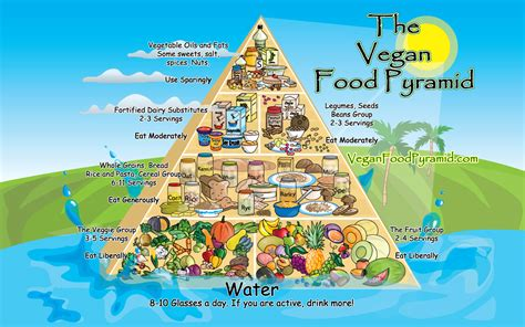 cuisinez vegan vegan edge nutrition the vegan food pyramid