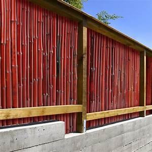 Bambusmatte Für Balkon : bambusmatte rot 3 gr en phyllostachys glauca sichtschutz f r garten ~ Bigdaddyawards.com Haus und Dekorationen