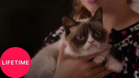 Grumpy Cat's Worst Christmas Ever  Lifetime Youtube