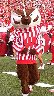 bucky badger wikipedia