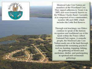 montreal lake cree nation prince albert grand council