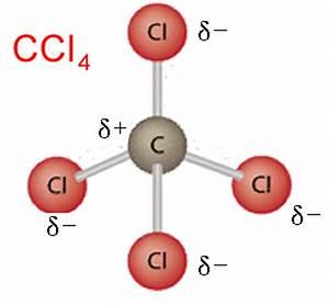 Image Gallery Nonpolar Molecule