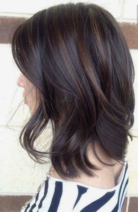 Brunettes With Brown by 25 Best Ideas About Brown Hair With Lowlights On