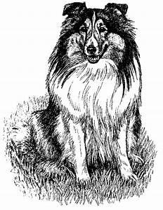 Animal Clip Arts: Dog Clipart