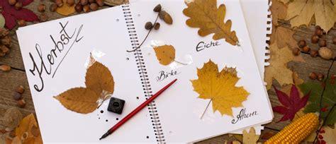 Blätter Pressen Wie Lange by Goldene Herbstzeit Basteln Mit Bl 228 Ttern Mytoys