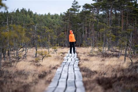 25 skaistākās apskates vietas Latvijā rudenī