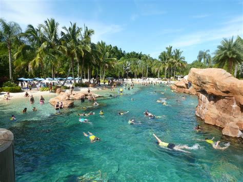 discovery cove orlando tickets is a day at discovery cove worth the money