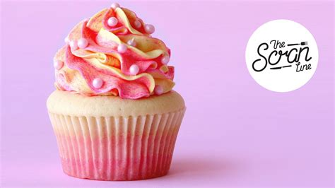 cuisine cupcake rosé champagne cupcakes ft allas food the scran line