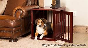 why is crate training so important unleashed unlimited With why crate a dog