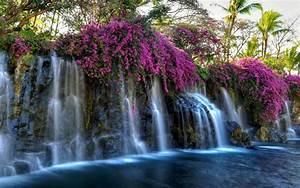 Download, 2560x1600, Waterfall, Pink, Flowers, Pond, Rocks, Moss, Wallpapers, For, Macbook, Pro, 13, Inch