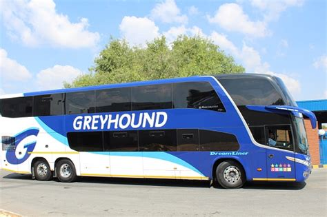 Greyhound Bus Bookings South Africa