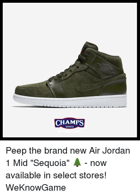 Jordan Shoes Memes - 25 best memes about new air jordans new air jordans memes