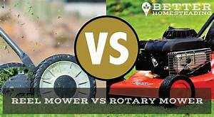 Reel Mower Vs Rotary Mower