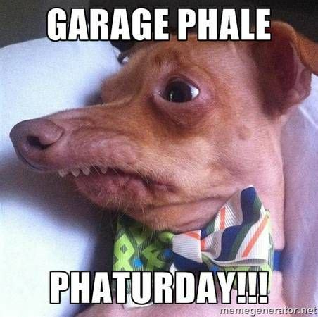 lisp meme dog images  pinterest tuna melts