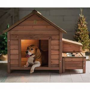 outdoor dog house wwwpixsharkcom images galleries With outdoor dog house for 2 dogs
