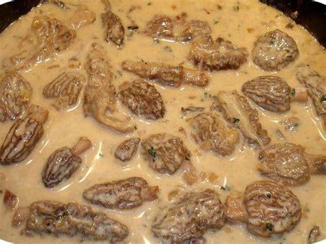 cuisiner morilles fraiches les meilleures recettes de morilles et chignons