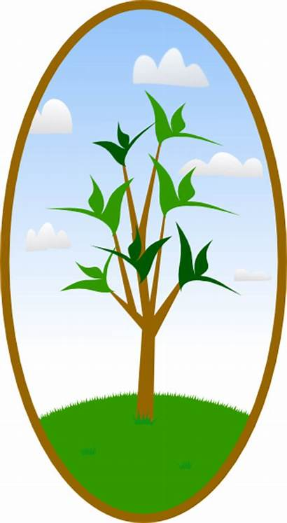 Oval Tree Landscape Clip Clipart Clker Vector