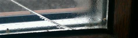 Почему потеют окна на балконе что делать при запотевании