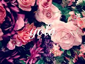 You Only Live Once | ClassyRatchet: Lifestyle | Pinterest ...