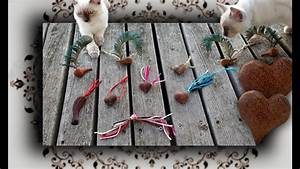 Gemüse Für Katzen : diy holzspielzeug f r katzen wooden toys for cats ~ Watch28wear.com Haus und Dekorationen