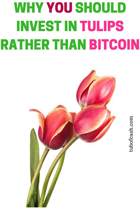 Should i invest in bitcoin? Should you invest in bitcoin? Bitcoin moeda   Bitcoin mining   bitcoin investing   Bitcoin ...