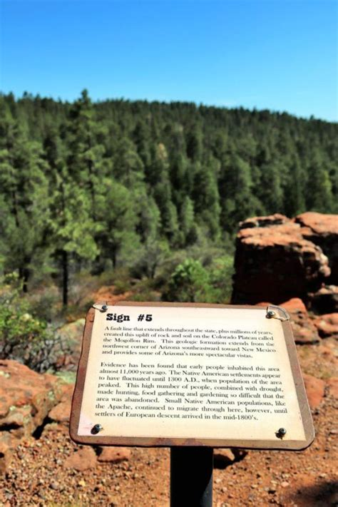 locals guide      pinetop