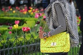 Tulips in Paris - The Fierce Diaries - Fashion & Travel ...