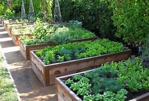 Huertos ecológicos [ahorra en salud] Riego y Jardines