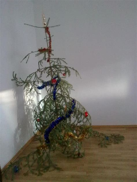christmas tree fail lol green garden christmas