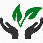 Environment Clipart Plant Healthy Environmental Transparent Health