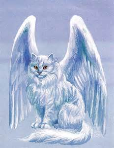 cats with wings winged cat warriors of myth wiki fandom powered by wikia