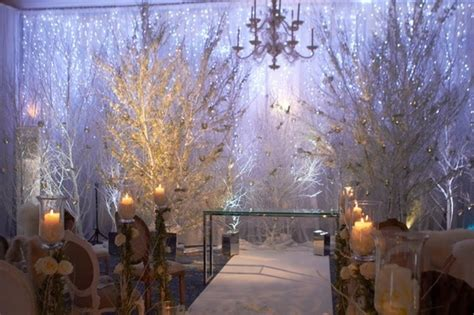 Tall White Trees During Ceremony For A White Winter