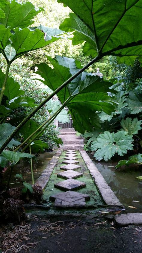 Jardin De Bretagne by Parcs Et Jardins De Bretagne Les Jardins De Kerdalo