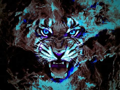 Cool Yin Yang Wallpapers Cool Tiger Face Blue Neon Rumble