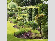 Garden ideas Ideas for gardens Plants Flowers