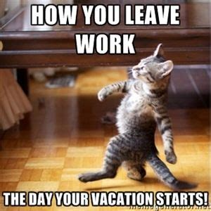 Vacation Memes - best 25 funny vacation quotes ideas on pinterest