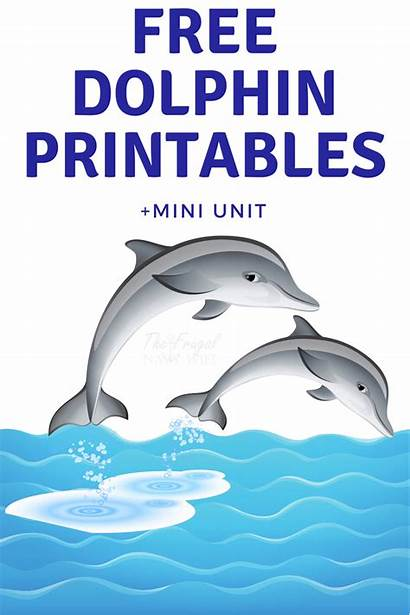 Dolphin Dolphins Printable Printables Unit Mini Let