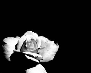 Amazing Wallpapers: Black and white wallpapers black white ...