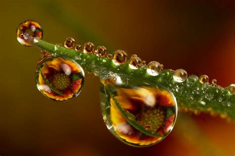 mind boggling water drop reflections