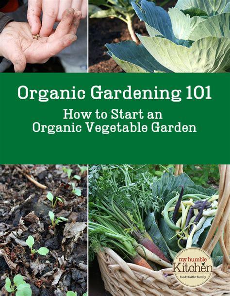 How To Start An Organic Vegetable Garden In Your Backyard organic vegetable gardening 101 how to start an organic