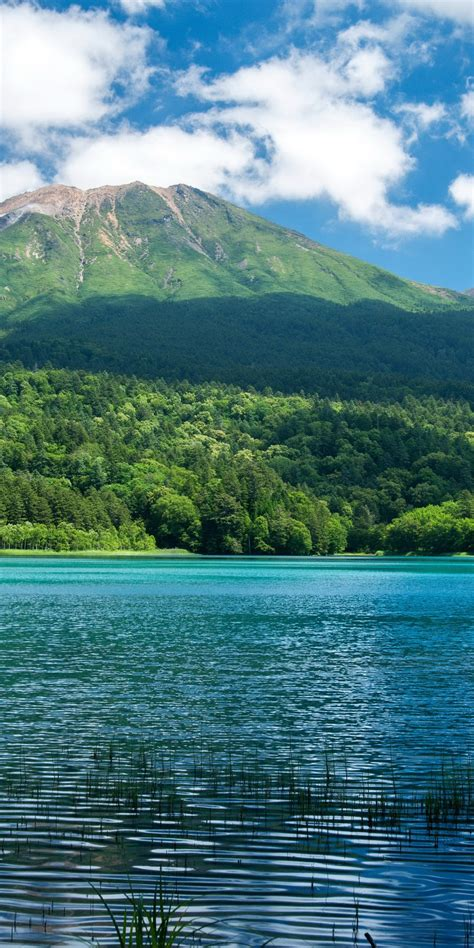 scenery lake mountains forests nature