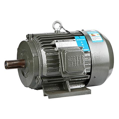 Induction Electric Motor the information is not available right now