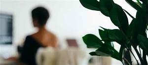 Im Sitzen Schlafen : gesund sitzen am arbeitsplatz mit dem lokosana sitzkissen einfach gesund schlafen das ~ Watch28wear.com Haus und Dekorationen