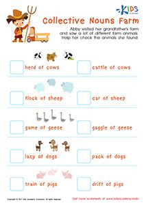 collective nouns worksheet for grade 2