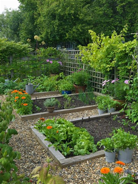 gardening ideas for gardening ideas for beginners landscape contemporary with concrete wall flowerbed garden