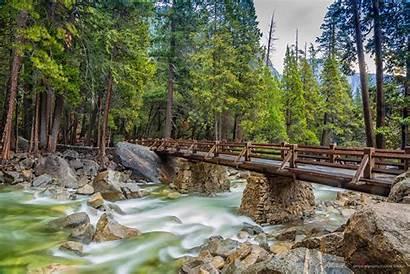 4k 8k Forest 5k Yosemite Apple Bridge