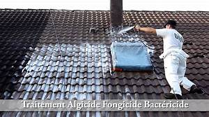 Traitement de toiture sur tuiles Redland par UAB